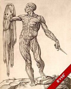 LEONARDO DA VINCI SKINNED HUMAN ANATOMY SKETCH PAINTING REAL CANVAS ...