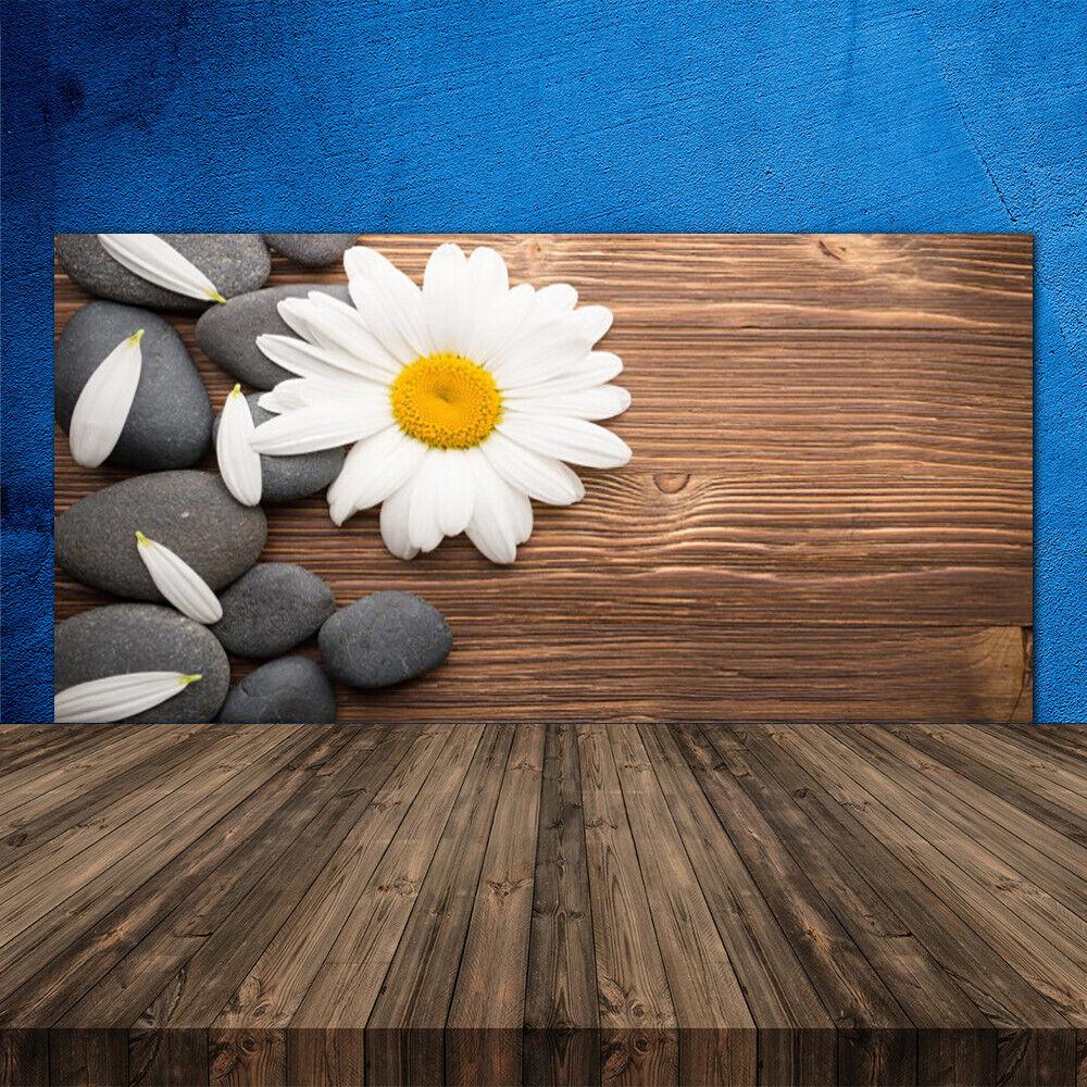 Crédence de cuisine en verre Panneau 120x60 Floral Marguerite Pierres
