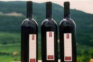 12-bottles-VALPOLICELLA-CLASSICO-DOC-2017-VIVIANI