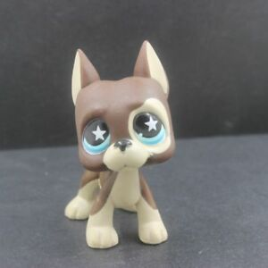 Rare Brown Dane Dog Puppy Star Eyes Hasbro Littlest Pet Shop Lps Toys 817 Ebay