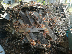 Brennholz zu verschenken 04315 leipzig ebay for Fenster zu verschenken