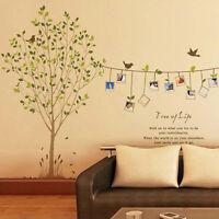 Tree Bird Photos Frame Removable Vinyl Art Wall Sticker Decal Mural Home Decor