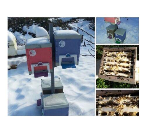 Thermo Bienenstock Bienenbeute Bienenzucht  Imker Bienenkasten zubehör