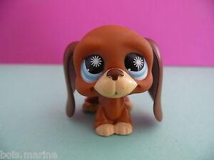 petshop chien basset hund roux marron / dark orange brown bassett dog N° 808