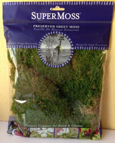Miniature FAIRY GARDEN Terrarium ~ Decorative Preserved Sheet Moss ~ NEW