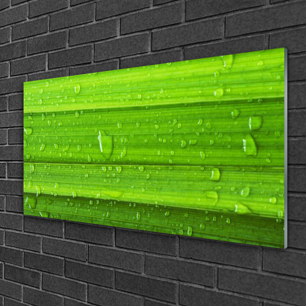 Glass print Wall art 100x50 Image Picture Grass Nature