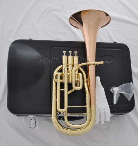 High grade rose brass bell Eb 3 piston Alto horn with case