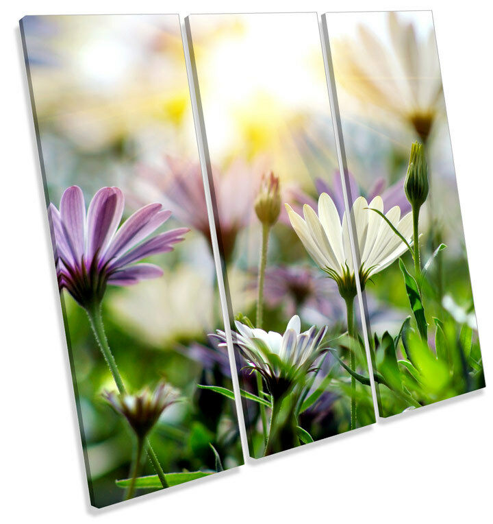 Summer Floral Meadow Scene TREBLE CANVAS WALL ART Square Picture Print