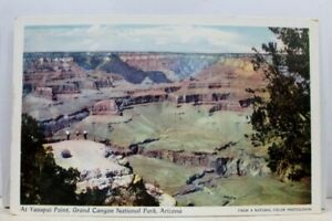 Arizona-AZ-Grand-Canyon-National-Park-Yavapai-Point-Postcard-Old-Vintage-Card-PC