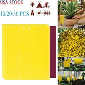 20/30pcs Sticky Fly Trap Paper Yellow Traps Fruit Flies Insect Glue Catcher Best