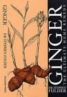 Ginger: The Ultimate Home Remedy by Stephen Fulder (Paperback, 1993)