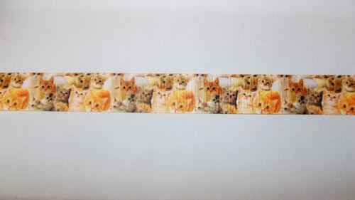 """Ginger Cat Kitten Printed Grosgrain Ribbon 25mm 1/"""" wide 1 2 or 5m lengths"""