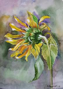 """Aquarell Gemälde """"Sonnenblume """"Sunflower"""" 20x27 cm watercolor paintings original"""