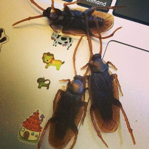 20× Lifelike Roach Realistic Fake Blackbeetle Gag Gift Cockroach Joke Prank Toys