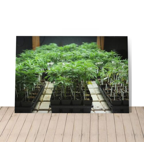 SMOKE WEED WALL ART Marijuana Leaf Plant Weed Get High Canvas Print Home Decor