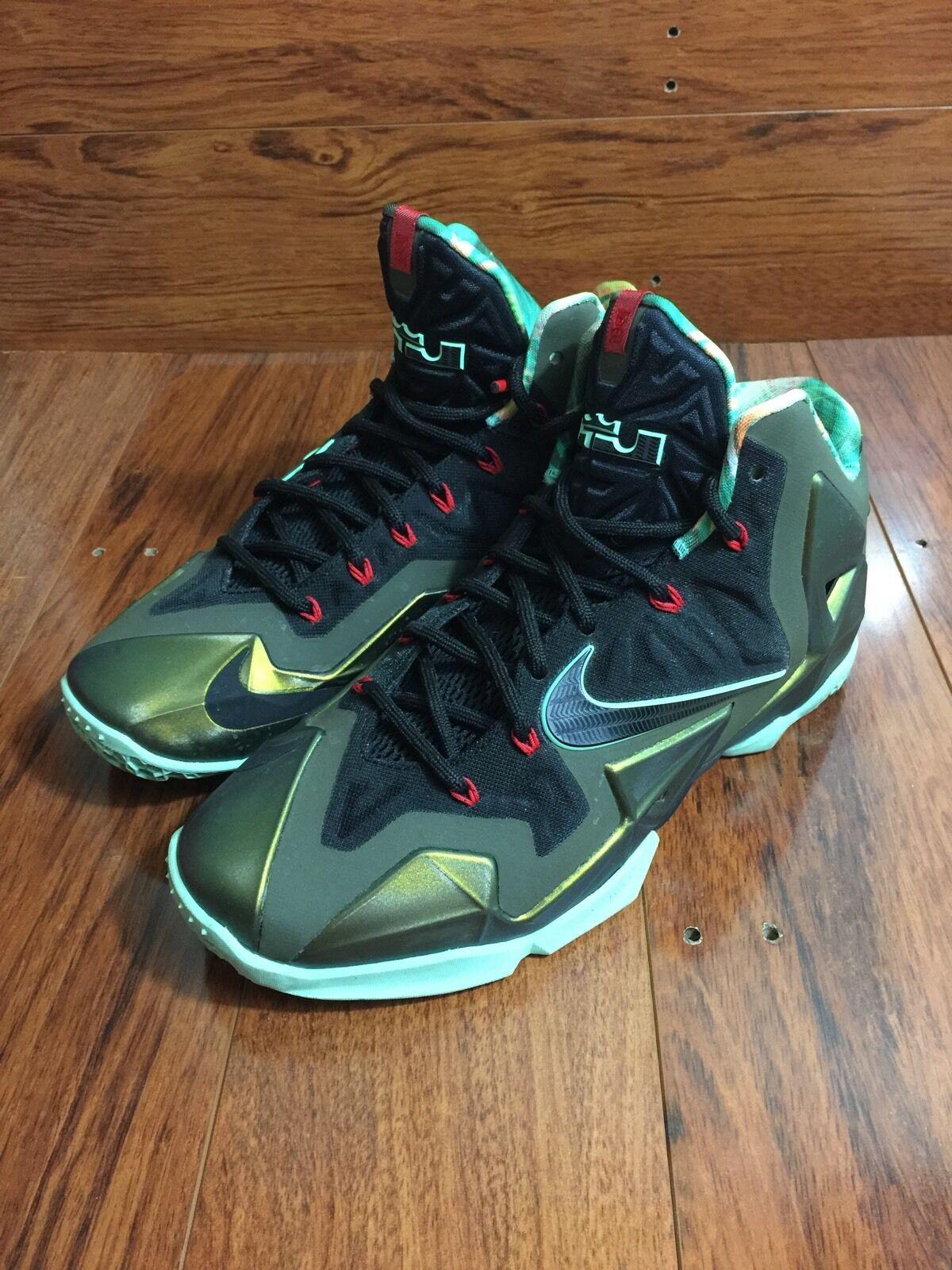 Nike Lebron XI kings Title Size 8 USED