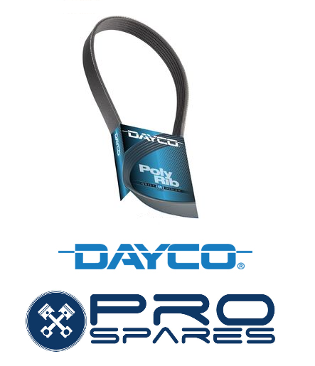Dayco 4PK0975 V-Ribbed Belts