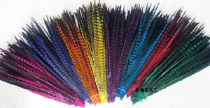 Wholesale,10-100Pcs beautiful pheasant tail feathers 30-35 cm / 12-14 inches