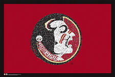 Florida State Seminoles Football FIGHT SONG NCAA Team Logo POSTER