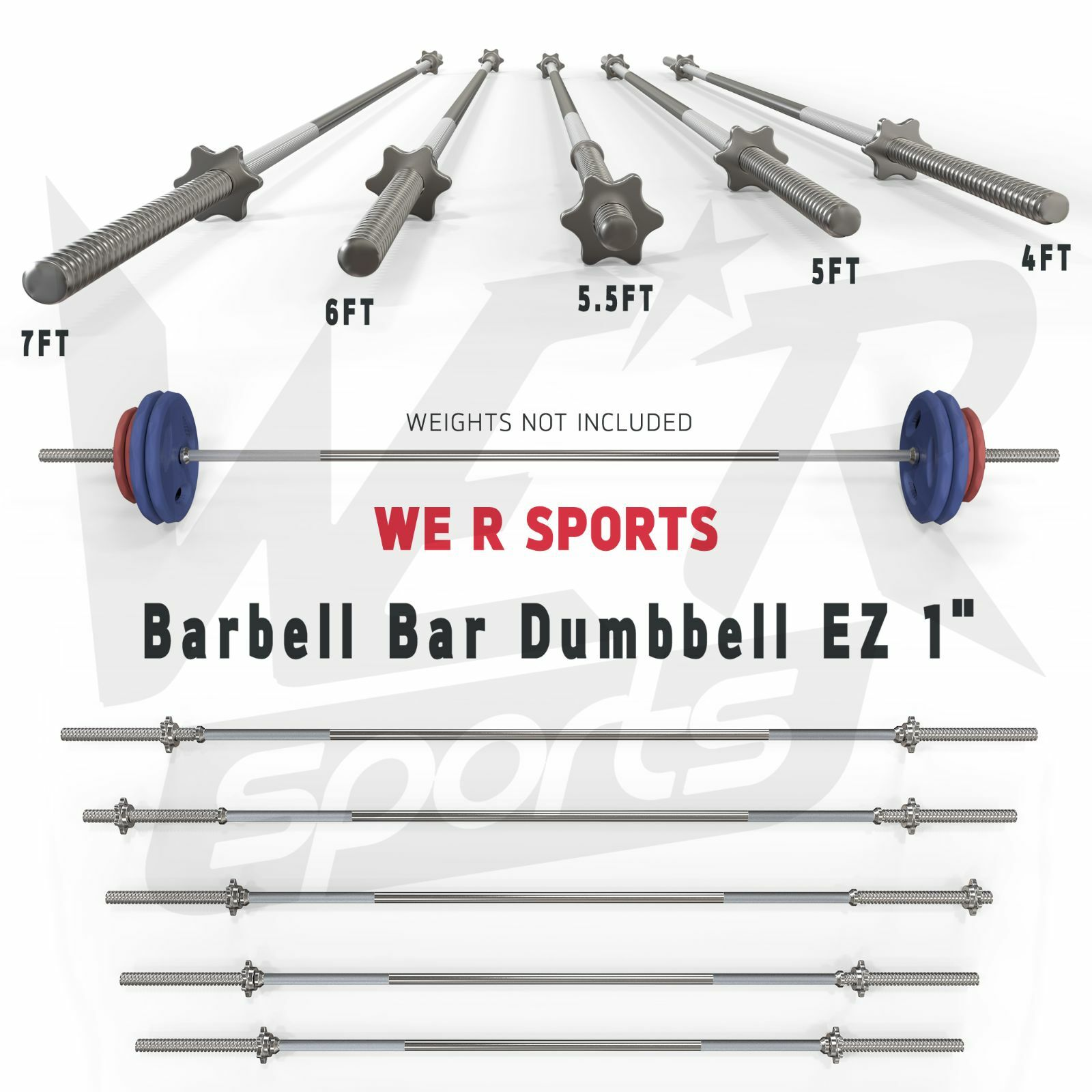 Barbell Bar Dumbbell Weight Lifting Triceps Curl Home Fitness EZ 1