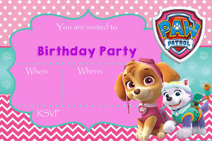 Image Is Loading Paw Patrol Skye Everest Pink Girls Birthday Party