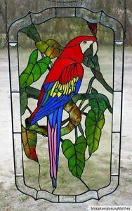 Bleiverglasung-Fensterbild-hellroter-Ara-mit-Echt-Antikglas-in-Tiffany