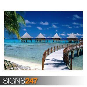 WALKWAY-TO-PARADISE-BEACH-3319-Beach-Poster-Poster-Print-Art-A0-A1-A2-A3-A4