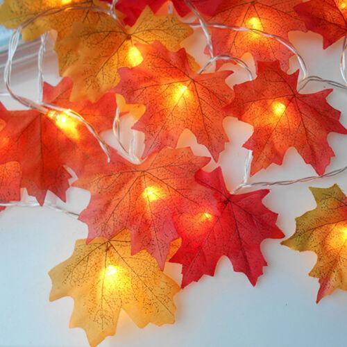 Halloween LED Ahorn Blätter fallen Girlande String Licht Dekor Hochzeit Patio
