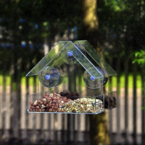 Natures Market Bird Feeder Clear Glass Window Viewing Table Hanging Station Seed