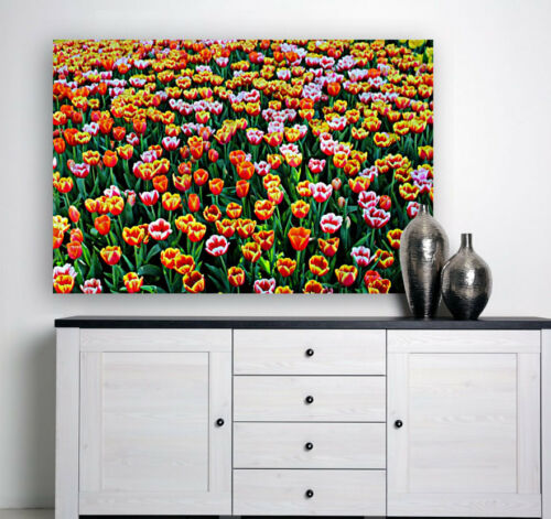 beautifulbloomblooming WALL DECOR PictureS Art Canvas choose your size