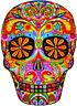 20 water slide nail art transfer colorful sugar skull 3/8 inch Trending