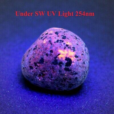 Syenite Fluorescent Sodalite Emberlite From Lake Superior 196.6 Gram YOOPERLITE Free UV Light/_/_Large 6.93 OZ