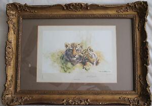 David-Shepherd-Tiger-Cubs-Signed-Ltd-Edition-Print-numbered-521-850-Framed
