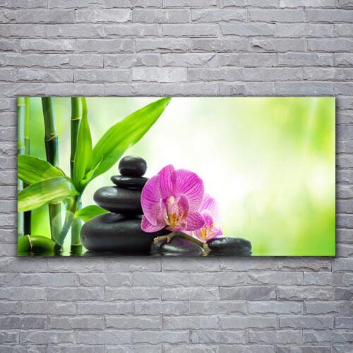 Wandbilder Glasbilder Druck auf Glas 120x60 Bambusrohre Blume Steine Pflanzen