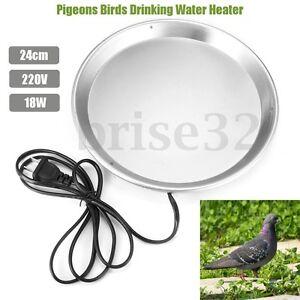 220V Flat Fountain Heater Pigeons Bird Drinking Water Heater for 5 L Drinker