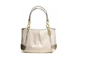 Coach-Alexandra-Chain-Tote-Leather-Python-Brass-Stud-Shoulder-Bag-Handbag-F20812