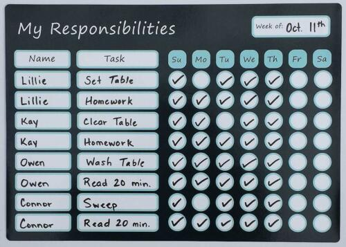 LillieKay Designs Chore Charts for Kids with Marker Magnetic Responsibility Rew