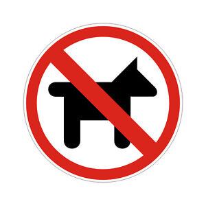 Chariots interdits Sticker plastifié INTERDIT AUX CADDIES 10cm x 10cm