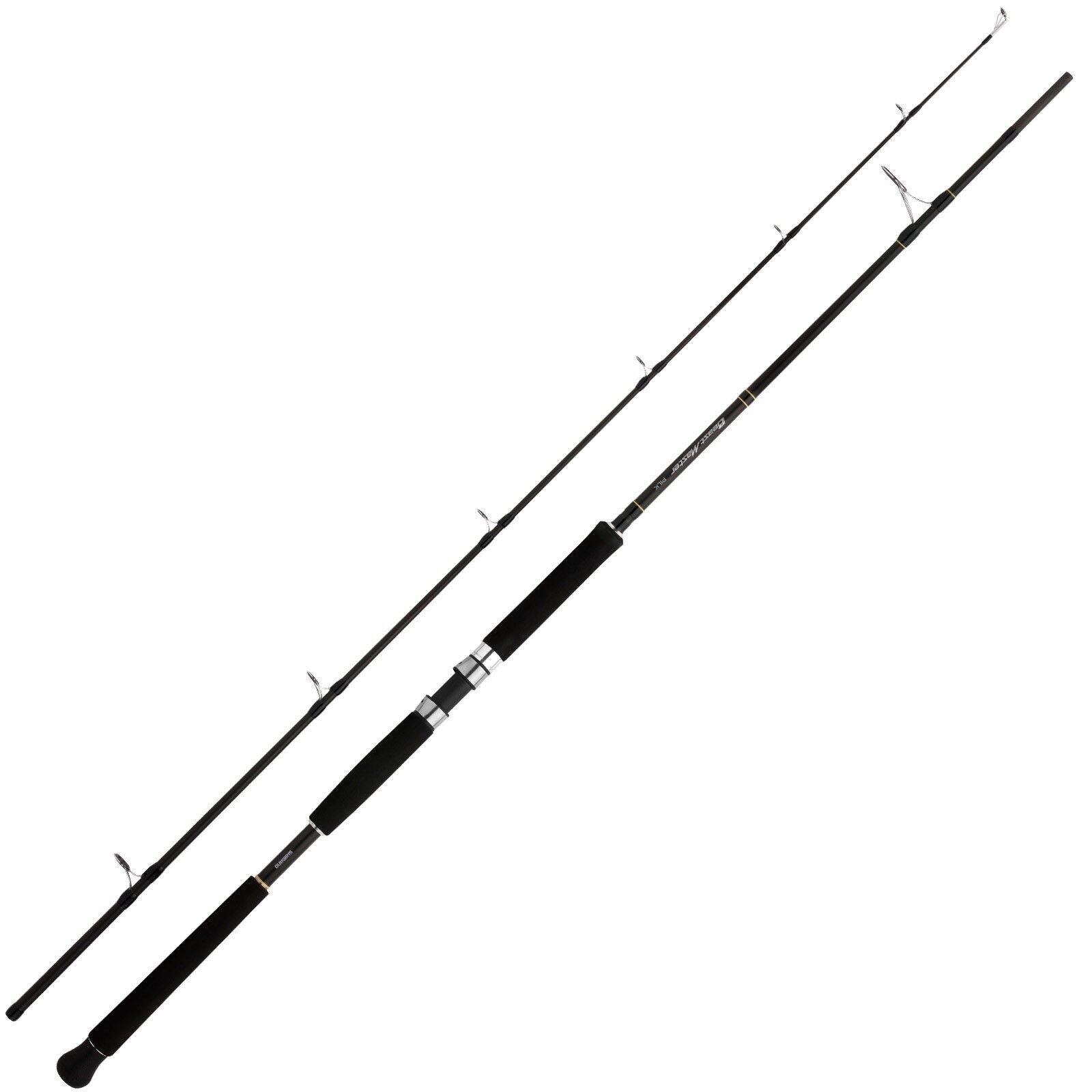 Shimano Meeresrute Pilkrute Beast Master Pilk 240 2,40m 100-200g