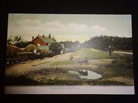 Nomansland New Forest FGO Stuart c1900s