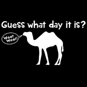 Funny Hump Day T-Shirt Guess What Day It Is ? All Sizes & Colors (577)  ...