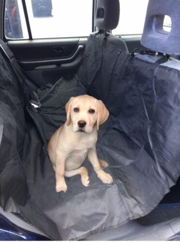 Rear Car Seat Waterproof Protector Hammock Pet Boot Liner Heavy Duty Mat