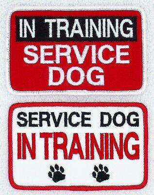 In Training Service Dog Patch 2.5X4 Assistance Disabled Support Vest Danny LuAnn
