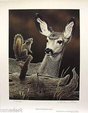 "Glenn OLSON ""Bright Eyed"" LTD art print Deer mint print Certificate COA Squirrel"