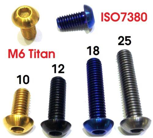 Titan M6 Linsenkopfschraube Ti iso 7380 M6 x 10 12 18 25 Lens bolt Dämpfer Achse