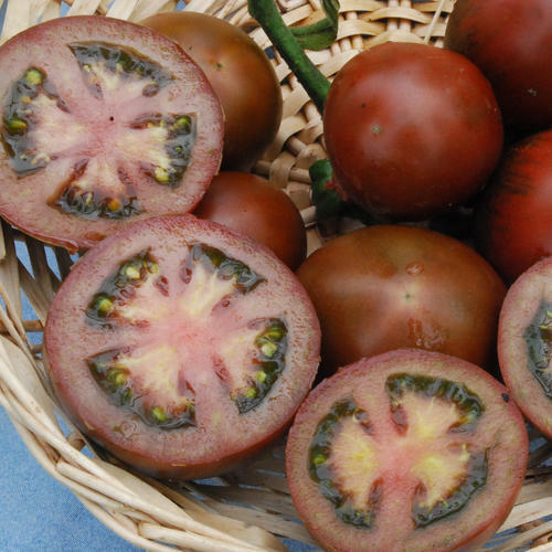 VEGETABLE TOMATO BLACK RUSSIAN 125 FINEST SEEDS