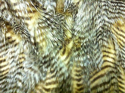 Super Luxury Faux Fur Fabric NEW PEACOCK All Sizes Bulk Discounts FREE POST