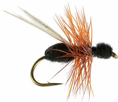 6pcs Half Dozen Bass Trout Salmon Steelhead Fly Fishing Flies Ant NEW