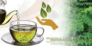 organic-Moringa-tea-gift-of-nature-brand-new-box-25-count-America-039-s-Favorite-Tea