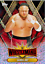 Topps-WWE-CHAMPIONS-WRESTLEMANIA-2019-RED-FOIL-CARDS-WM1-TO-WM50-CHOOSE thumbnail 44